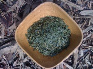 Shanti Pierce Bamboo Leaf Tea
